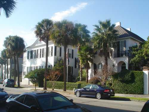 Charleston Homes surrounded by Palm Trees